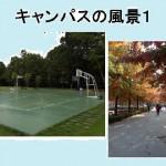 慶北大学 キャンパス1