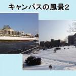 慶北大学 キャンパス2